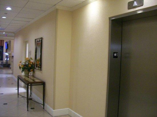 Hilton Garden Inn Florence: First Floor Elevator Bank off of the Lobby.