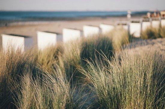 Strandhotel Cadzand : Beach