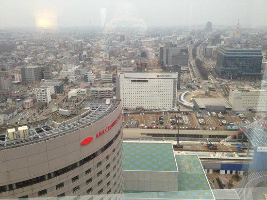 Hotel Nikko Kanazawa: View from room
