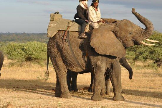 Kapama Southern Camp: Riding an Elephant