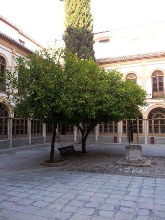 Macia Monasterio Los Basilios: Chiostro
