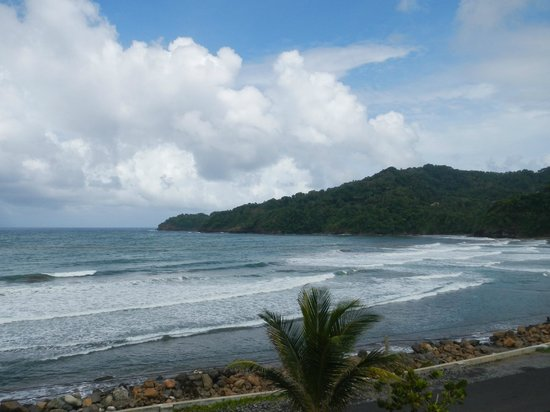 Pagua Bay Bar and Grill: The view from Pagua Bay House Bar & Grill- Atlantic Ocean