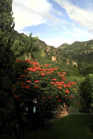 Hotel Amatlan de Quetzalcoatl: Vista del tepozteco