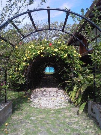 Blue Osa Yoga Retreat and Spa: Pathway