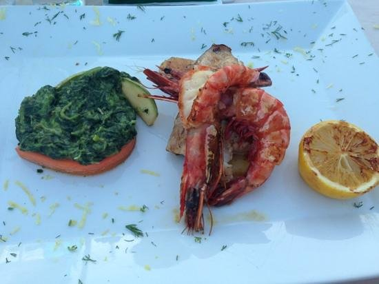 Fish Terrace : special of the day - red snapper with prawns & creamed spinach. Delicious!