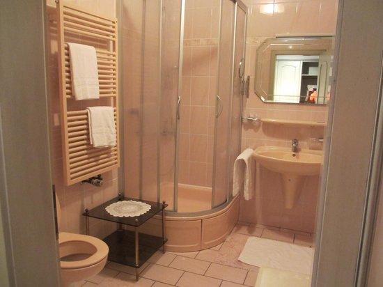Hotel Restaurant Drei Hasen : bathroom