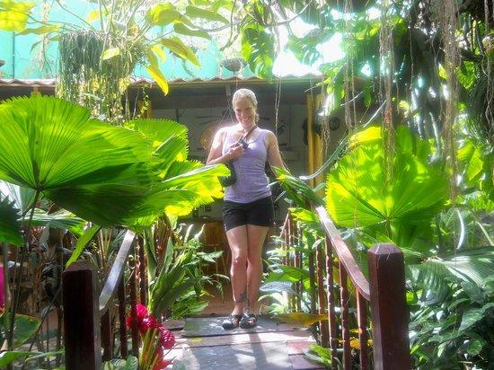 Casa Lima B & B: Courtyard