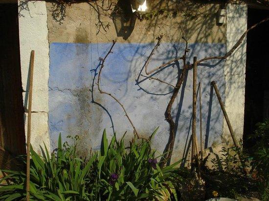 Les Jardins du Village: iris