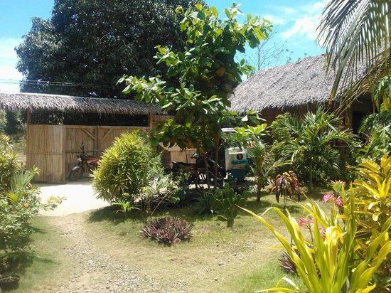 Reggae Guesthouse: Parking area