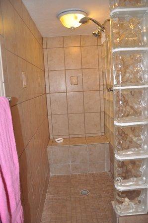 1800 أتلانتيك سويتس: Master shower