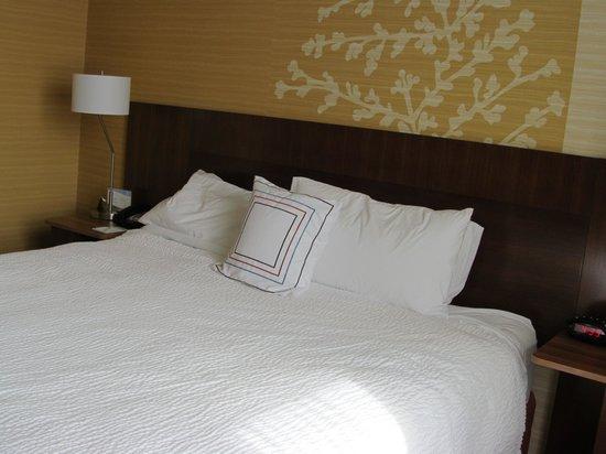 Fairfield Inn & Suites Towanda Wysox: King sized bed