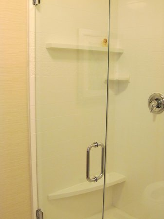 Fairfield Inn & Suites Towanda Wysox: shower