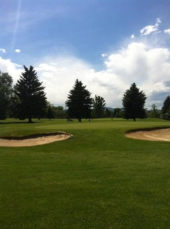 Collindale Golf Course: #18 green