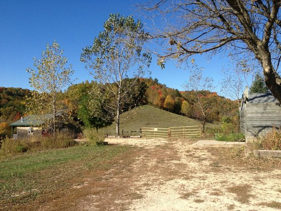 Kickapoo Valley Ranch Guest Cabins: hill