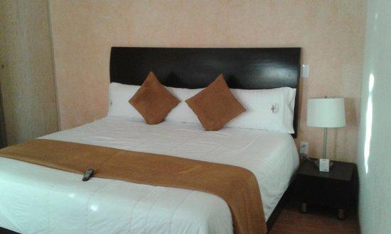 Hotel Quinta Rio Queretaro: Habitacion Cama