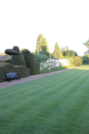 The Manor: cool hedgerows