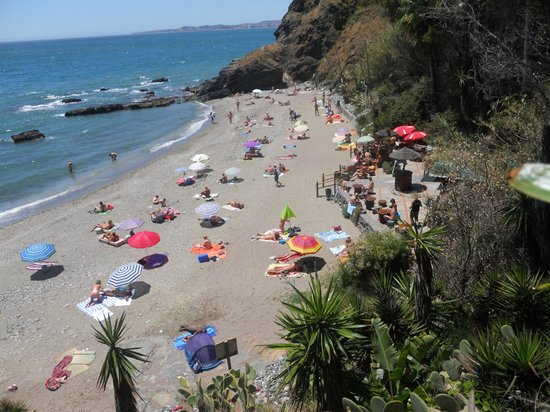 First Flatotel Internacional: playa de benalnatura