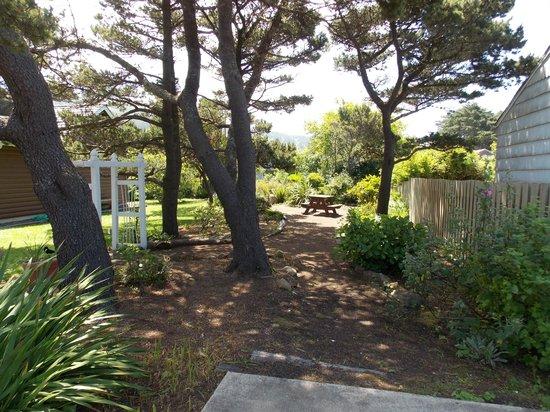 Little Log Church : The garden in the rear
