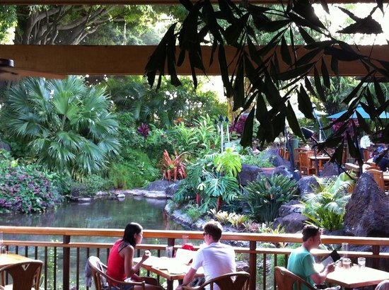 Keoki's Paradise: A shot of the water feature from inside the dining area.