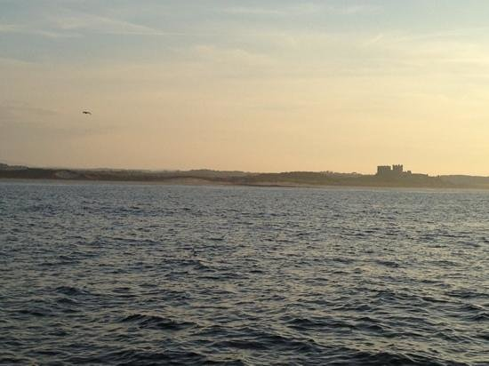 Serenity Farne Island Boat Tours: The Castle and the sunset! Wonderful!