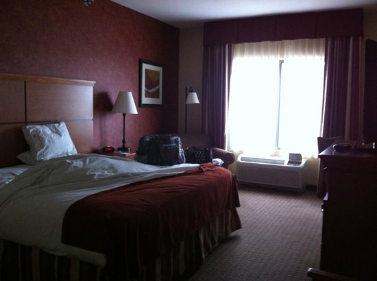 Holiday Inn Express Hotel & Suites Loveland: King Bed Room