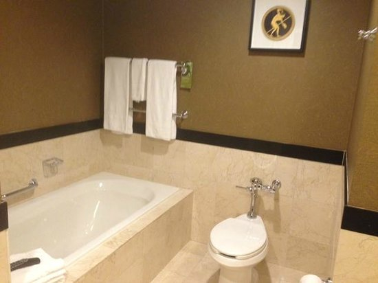 Kimpton Grand Hotel Minneapolis: Bathroom