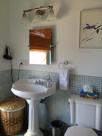 Addington Arms B&B: Pretty bathroom with steam shower
