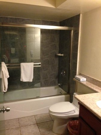 Park Plaza Lodge Hotel : Bathroom