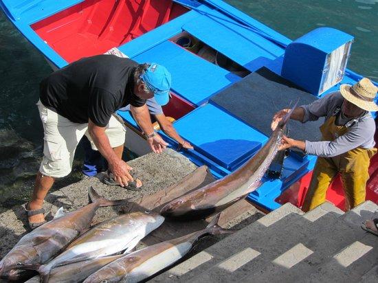 Cofradia de Pescadores Nuestra Senora del Carmen: am Hafen in Vueltas