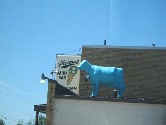 Sherman's Dairy Bar: Sherman's Ice Cream, South Haven, MI