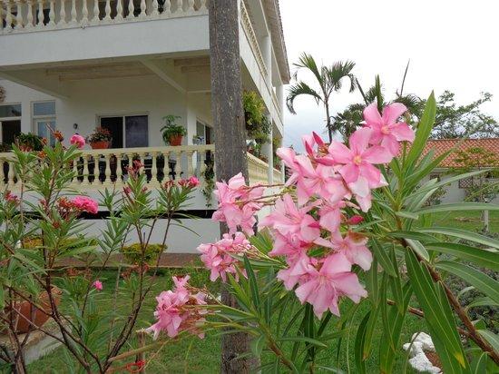Hosteria Mar y Sol: Lindos jardines