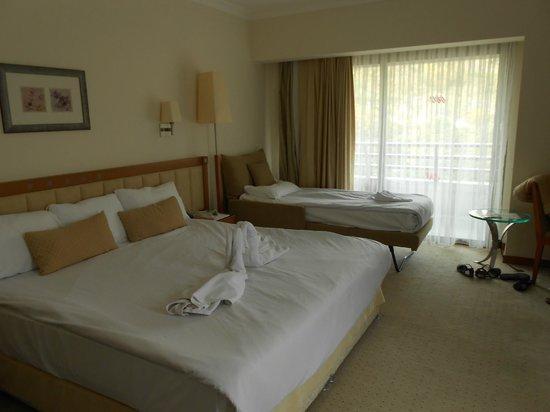 Korumar Hotel De Luxe: Triple room