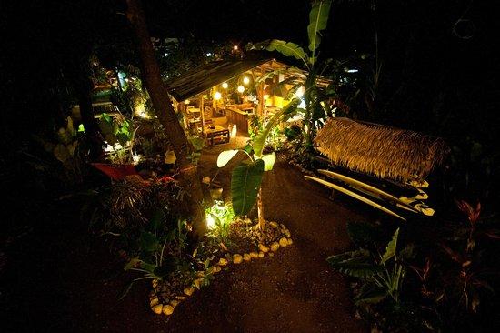 Casa del Mar Surf Destiny: jardin