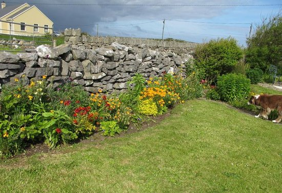 Daly's House: garden