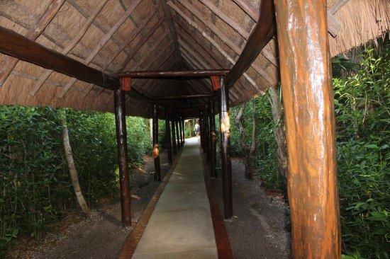 Grand Palladium Kantenah Resort & Spa: Path to the beach