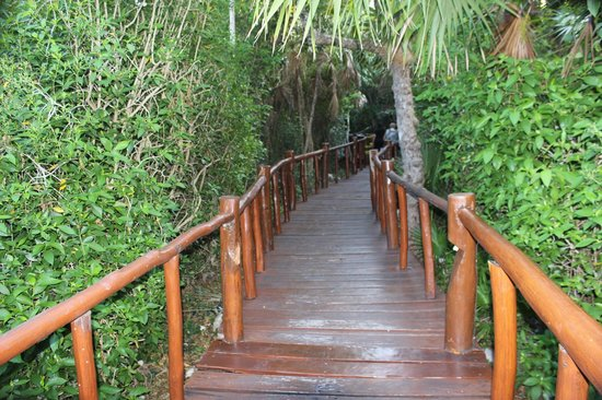 Grand Palladium Kantenah Resort & Spa: Path to the restaurant and lobby
