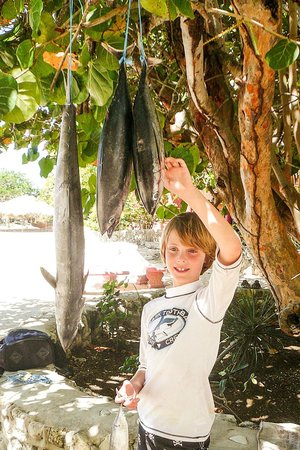 Coral Cove Resort : Tuna for dinner tonight