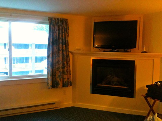 Sea View Motel: Wonderful and beautifully decorated room even included a fireplace for those cool or cold nights