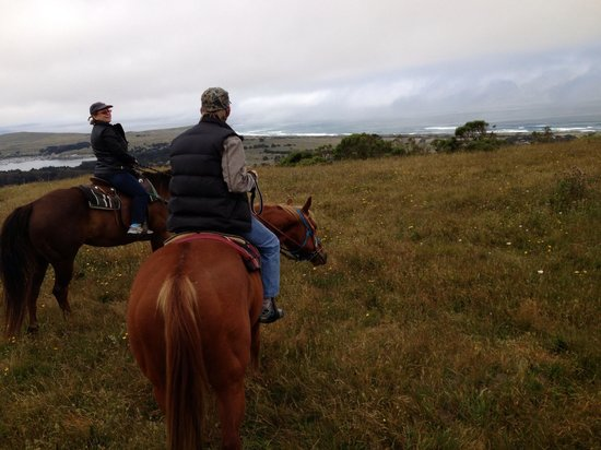 Horse N Around Trail Rides: getlstd_property_photo