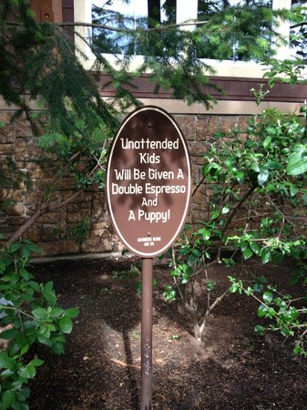 Alderbrook Resort & Spa: Family friendly and great sense of humour!