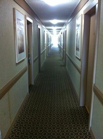 Sands Inn & Suites: clean hallways