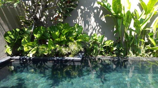 W Bali - Seminyak: Если Вы останавливаетесь в вилле, в Вашем распоряжении уютный дворик с бассейном, шезлонгами....