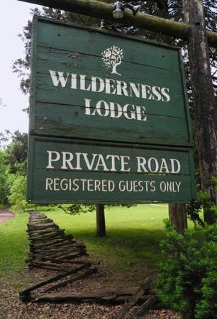 Entrance-Peola Road with iconic Wilderness Lodge tree on the big hill. The moon rises just behin