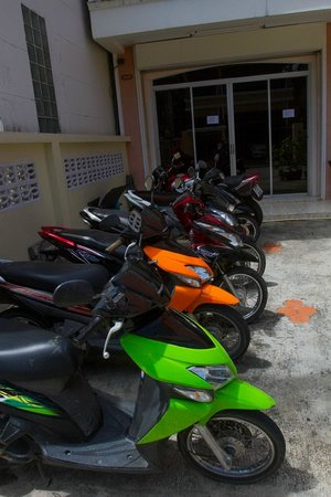 Honey Bear Guesthouse: Scooters for rent