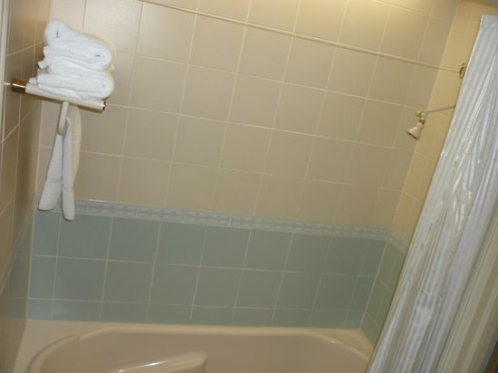 Cairns Colonial Club Resort: Bathtub & Shower - Superior Garden View Room