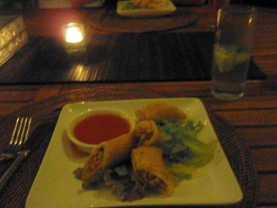 Zenubud: dinner (the best spring rolls!)