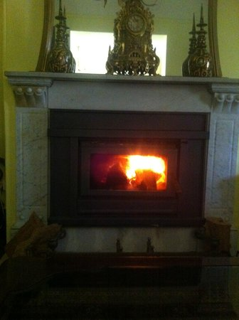 Log fire below enormous mirror in lounge room