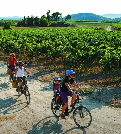 Burricleta Penedés Garraf: Cycling the ebike on the vineyards