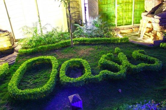 Oasis Residency: LAndscaping