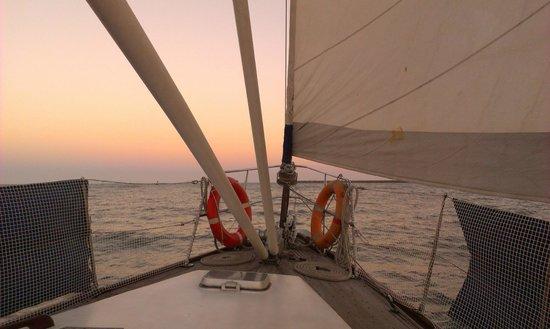Port Sail Charters: ship